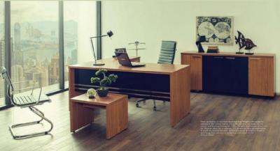 Мебель для руководителей Offissa Dizayn  Smart